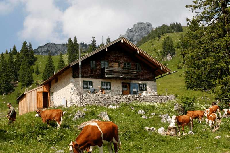 Koupě pozemku a stavba v Chráněné krajinné oblasti. Co byste měli vědět?