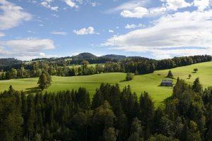 Krajina - převod orné půdy