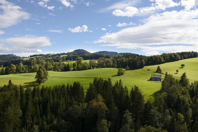 Vyjmutí z půdního fondu: Jak převést ornou půdu na stavební pozemek?