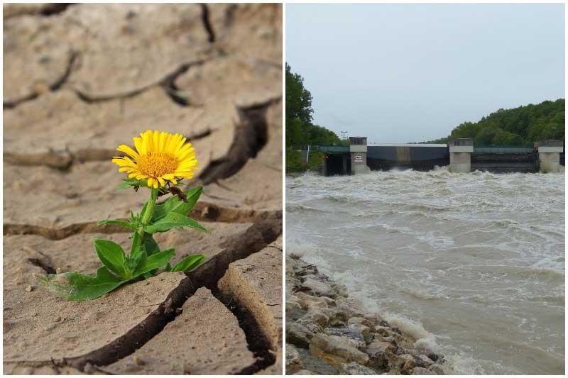 Sucho a povodně. Jak můžete přispět k řešení palčivého problému s vodou